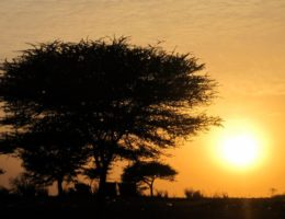 Sunset in Louga, Senegal