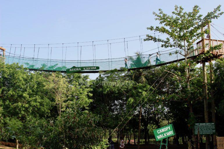Legon Botanical Gardens canopy walk in Accra, Ghana